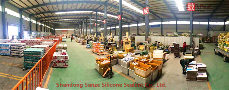 Sanze silicone sealant workshop